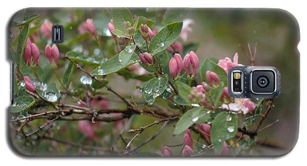April Showers 6 Galaxy S5 Case