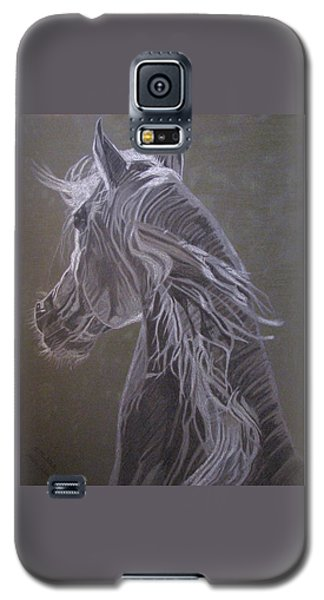 Arab Horse Galaxy S5 Case by Melita Safran