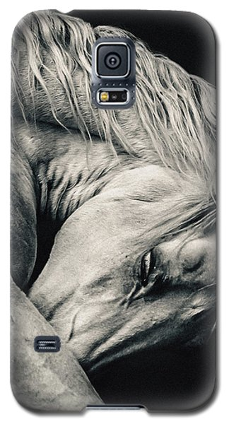 Arabian Beauty White Horse Portrait Galaxy S5 Case