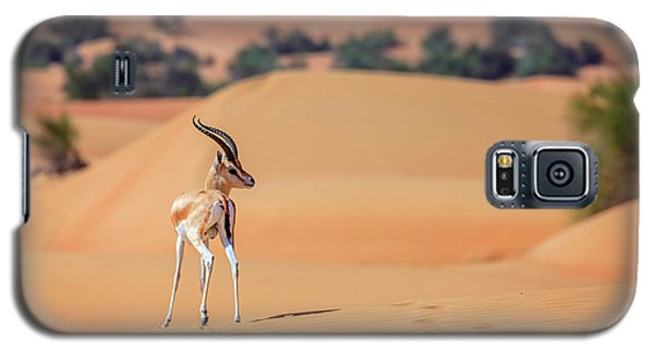 Galaxy S5 Case featuring the photograph Arabian Gazelle by Alexey Stiop