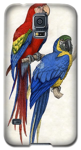 Aracangua And Blue And Yellow Macaw Galaxy S5 Case