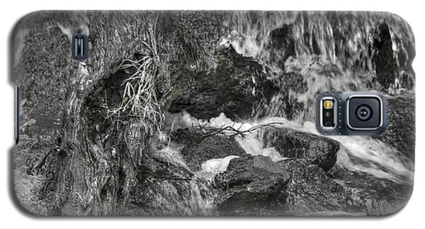 Arboretum Waterfall Bw Galaxy S5 Case by Richard J Cassato