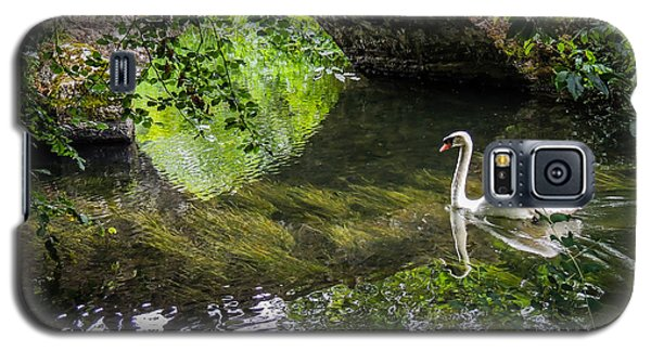 Arched Bridge And Swan At Doneraile Park Galaxy S5 Case
