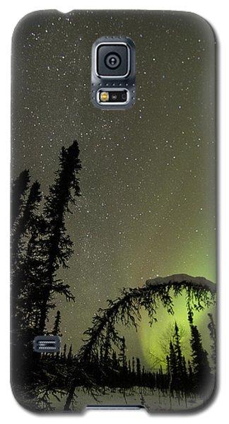 Arched Spruce Aurora Galaxy S5 Case