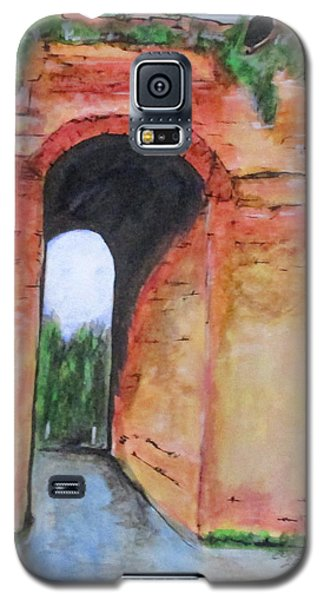 Arco Felice, Revisited Galaxy S5 Case