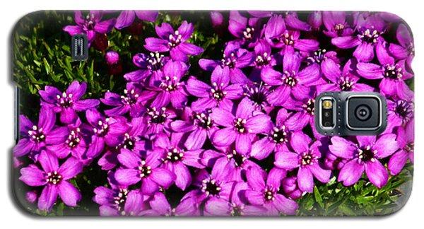 Arctic Wild Flowers Galaxy S5 Case