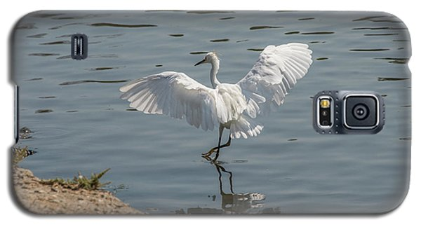 Are You Ready To Dance - Great Egret In Mtn View Ca Galaxy S5 Case