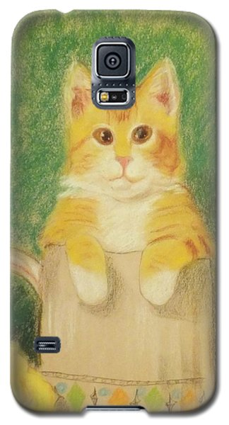 Galaxy S5 Case featuring the drawing Are You Sure It's Ok To Be In Here? by Denise Fulmer