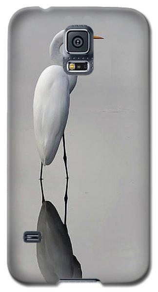 Argent Mirror #2 Galaxy S5 Case