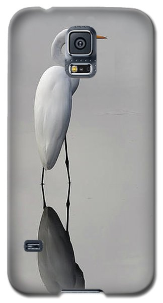 Argent Mirror #2 Galaxy S5 Case