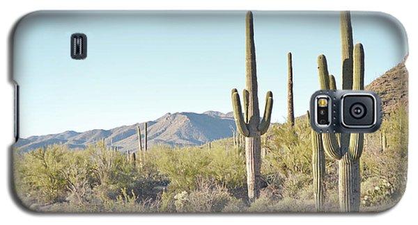 Arizona Cactus Blue Sky Landscape Galaxy S5 Case by Andrea Hazel Ihlefeld