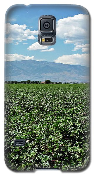 Arizona Cotton Field Galaxy S5 Case