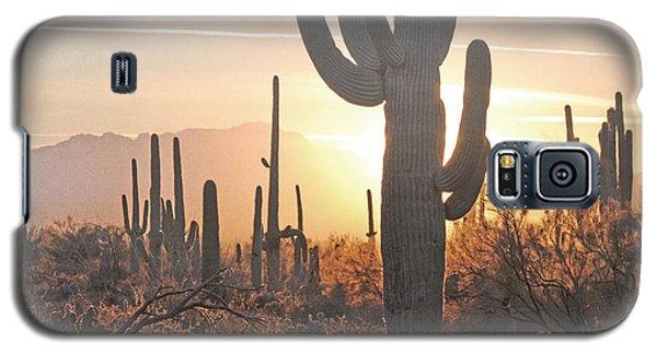 Arizona Saguaro Cactus Sunset Desert Landscape Galaxy S5 Case by Andrea Hazel Ihlefeld