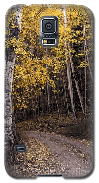 Galaxy S5 Case featuring the photograph Around The Bend by The Forests Edge Photography - Diane Sandoval