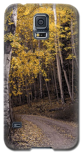 Around The Bend Galaxy S5 Case by The Forests Edge Photography - Diane Sandoval