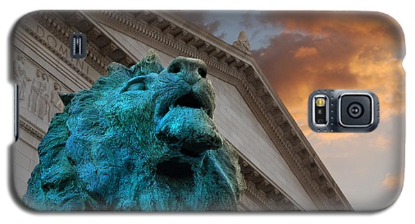 Art And Lions Galaxy S5 Case