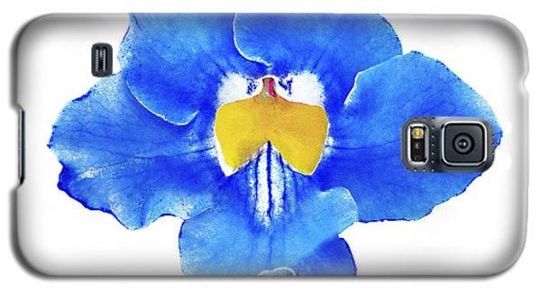 Art Blue Beauty Galaxy S5 Case