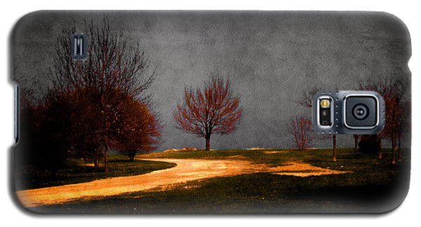 Art In The Park Galaxy S5 Case