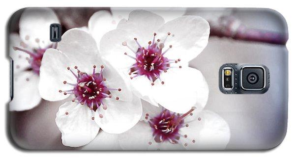 Art Of Spring Galaxy S5 Case