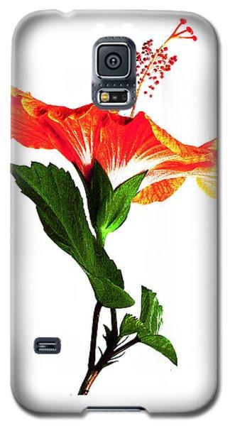 Art Orange Galaxy S5 Case
