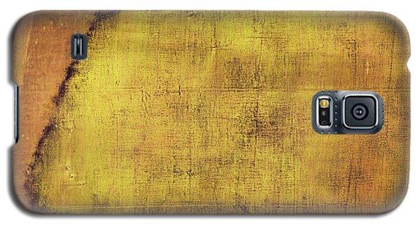 Art Print Terra Galaxy S5 Case