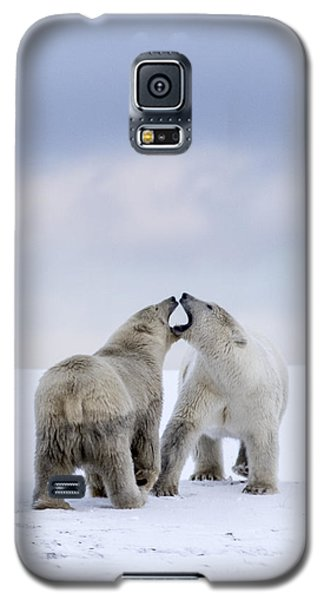 Artic Antics Galaxy S5 Case