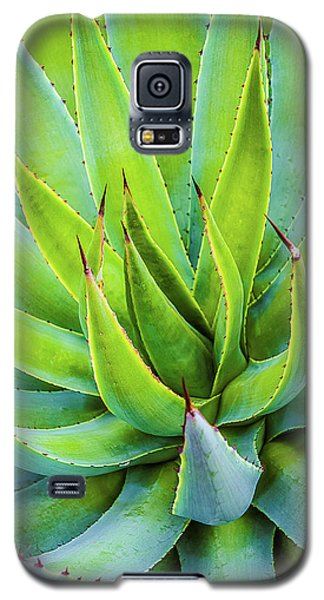 Galaxy S5 Case featuring the photograph Artichoke Agave Desert Plant by Julie Palencia