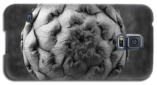 Artichoke Black And White Still Life Two Galaxy S5 Case by Edward Fielding