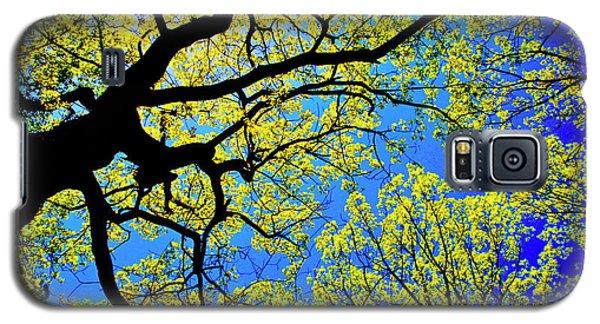 Artsy Tree Canopy Series, Early Spring - # 01 Galaxy S5 Case
