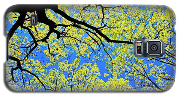 Artsy Tree Canopy Series, Early Spring - # 03 Galaxy S5 Case