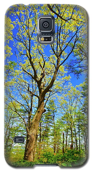 Artsy Tree Series, Early Spring - # 04 Galaxy S5 Case