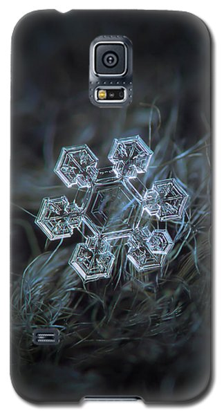 Galaxy S5 Case featuring the photograph Icy Jewel by Alexey Kljatov