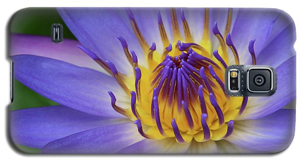 The Lotus Flower Galaxy S5 Case by Sharon Mau