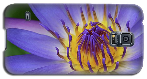 The Lotus Flower Galaxy S5 Case