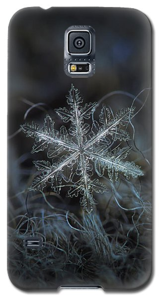 Leaves Of Ice Galaxy S5 Case by Alexey Kljatov