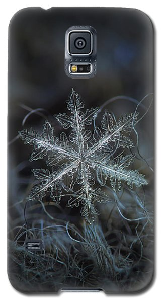 Leaves Of Ice Galaxy S5 Case