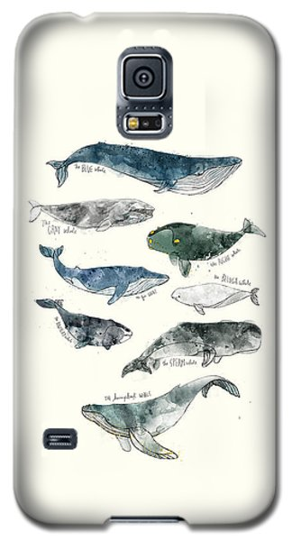 Wildlife Galaxy S5 Case - Whales by Amy Hamilton