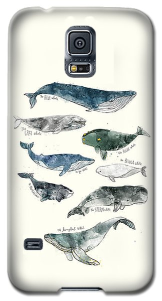 Wildlife Galaxy S5 Case - Whales by Amy Hamilton