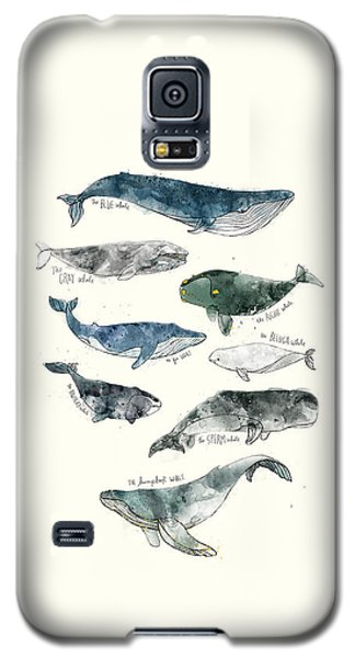 Whales Galaxy S5 Case by Amy Hamilton