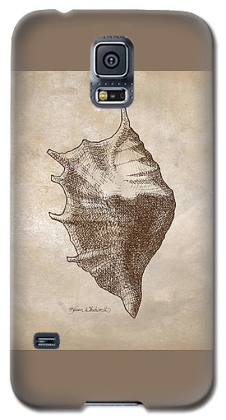 Galaxy S5 Case featuring the drawing Distressed Antique Nautical Seashell 1  by Karen Whitworth