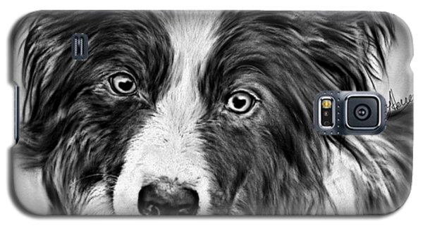 Border Collie Stare Galaxy S5 Case