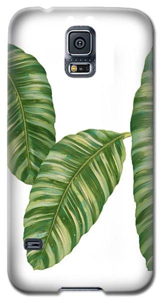 Rainforest Resort - Tropical Banana Leaf  Galaxy S5 Case