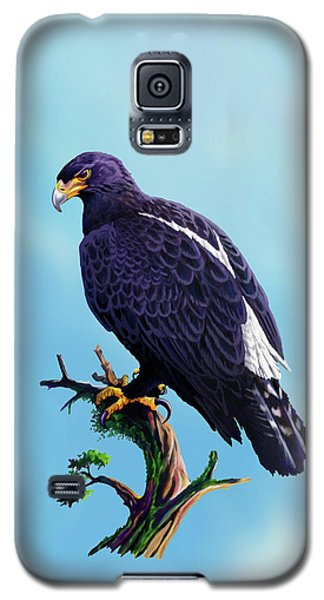 Verreaux's Eagle  Galaxy S5 Case by Anthony Mwangi
