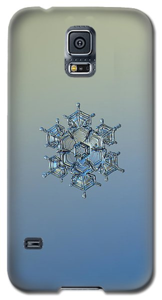 Snowflake Photo - Flying Castle Alternate Galaxy S5 Case by Alexey Kljatov