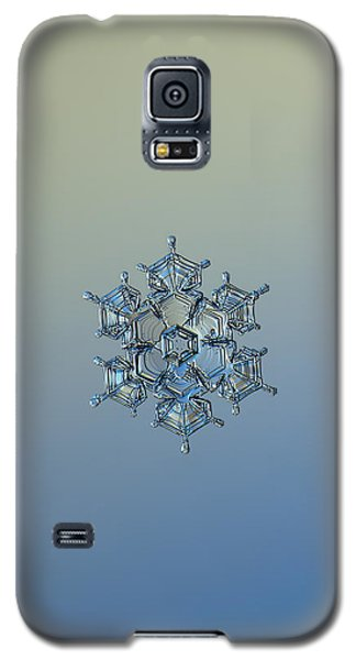 Snowflake Photo - Flying Castle Alternate Galaxy S5 Case