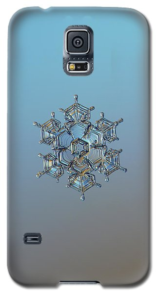 Snowflake Photo - Flying Castle Galaxy S5 Case by Alexey Kljatov