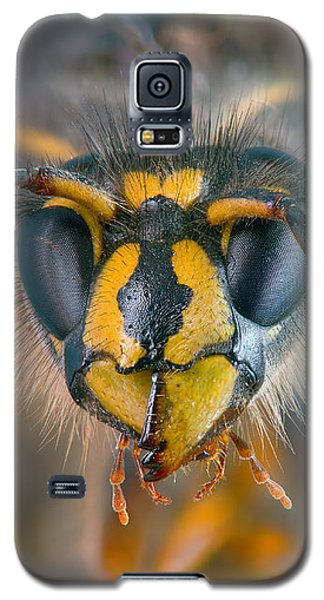 Galaxy S5 Case featuring the photograph Wasp Portrait by Alexey Kljatov