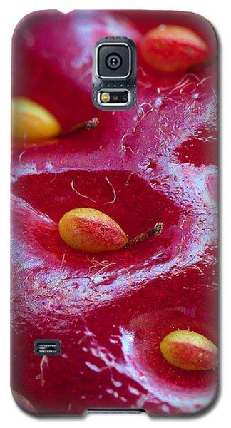Strawberry Fields Galaxy S5 Case