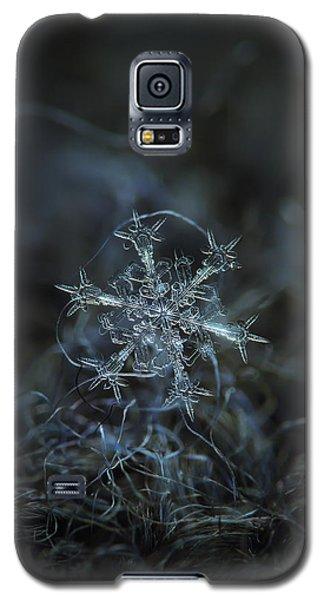 Starlight, Panoramic Version Galaxy S5 Case