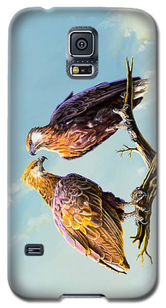 Madagascar Fish Eagle  Galaxy S5 Case